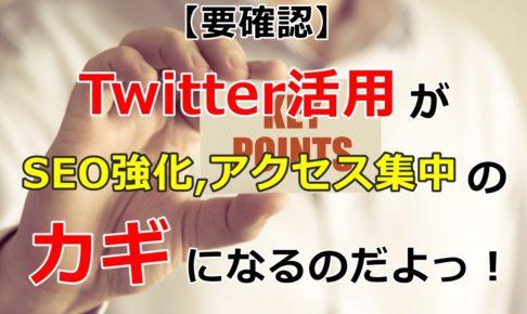 【要確認】Twitter活用がSEO強化、アクセス集中のカギになるのだよっ!